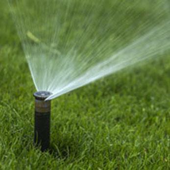 nawadnianie trawników przez firmy ogrodnicze