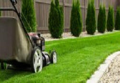 koszenie trawy przez firmy ogrodnicze